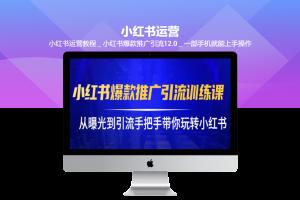 小红书运营教程_小红书爆款推广引流12.0_一部手机就能上手操作